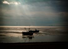 Estuary w