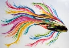 finished fish web